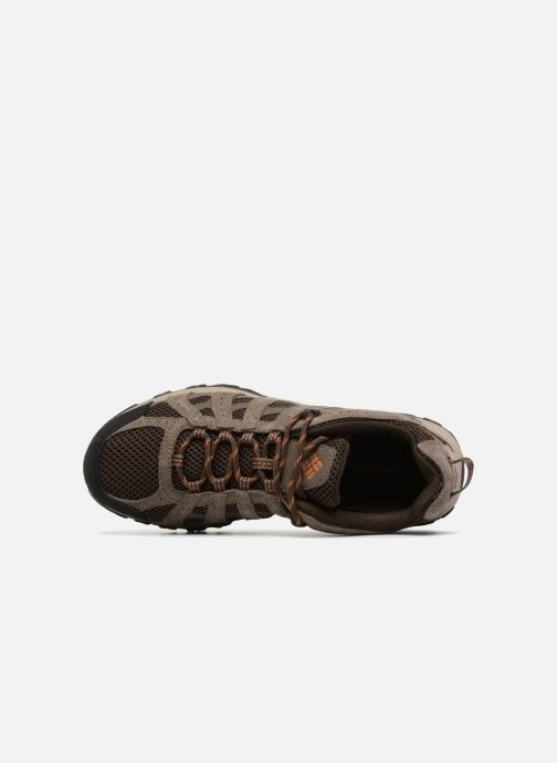 Chaussures de sport Columbia Canyon Point Marron vue gauche