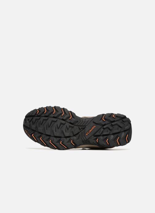 Chaussures de sport Columbia Canyon Point Marron vue haut