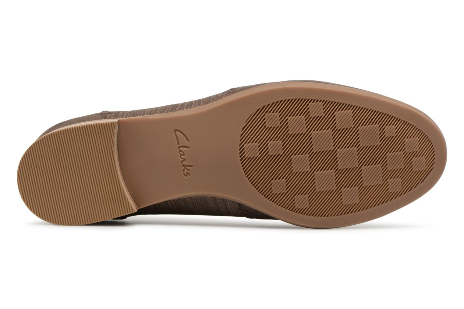 Ballet pumps Clarks Alice Ivy Brown view from above