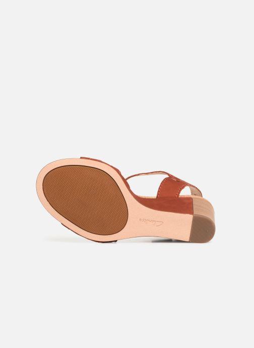 Sandales et nu-pieds Clarks Spiced Poppy Rouge vue haut