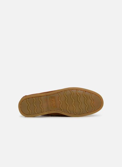 Chaussures à lacets Polo Ralph Lauren Merton Marron vue haut