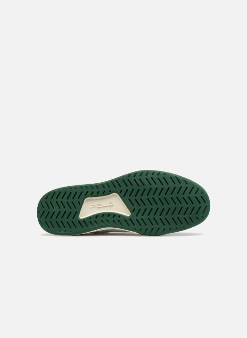 Sneakers Polo Ralph Lauren Court100 Wit boven