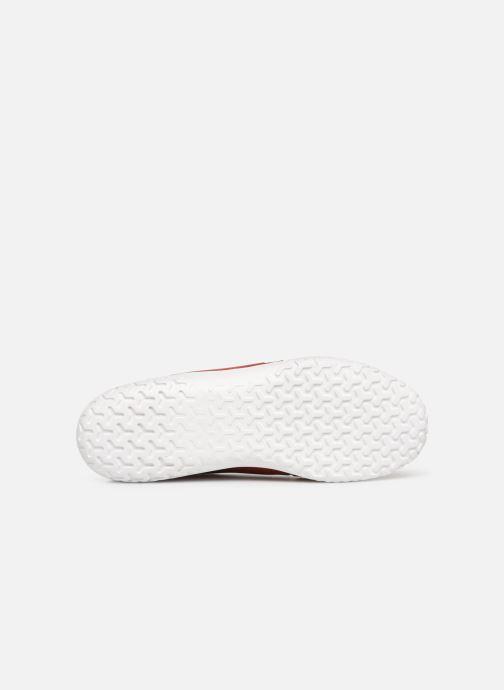 Sneakers Polo Ralph Lauren Train150 Rood boven