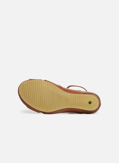 Sandales et nu-pieds Kickers Toki Marron vue haut