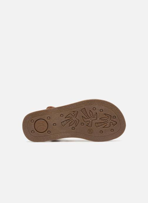 Sandales et nu-pieds Minibel Porquerol Marron vue haut
