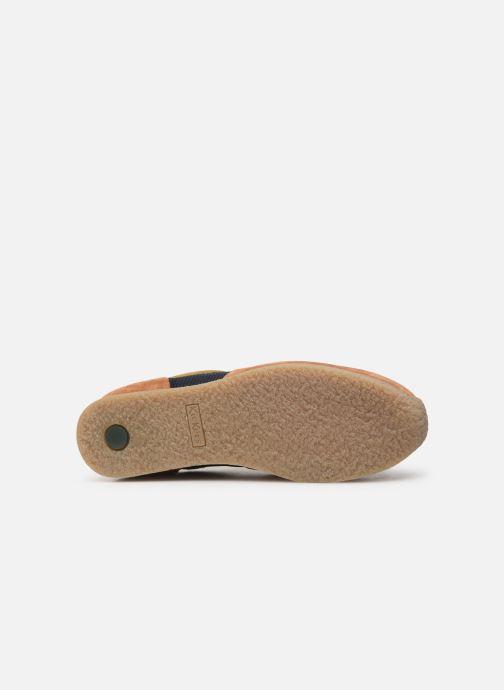 Sneakers Kickers Olympei Blå se foroven