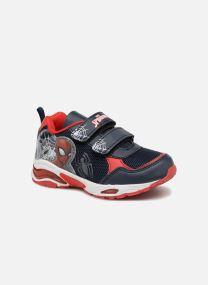 Sneakers Barn Scrutin