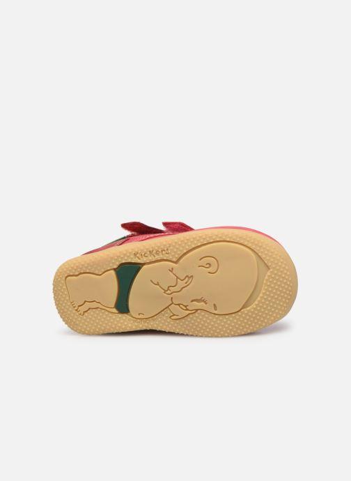 Bottines et boots Kickers Bonkro Rose vue haut