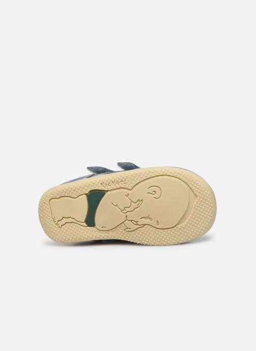 Boots en enkellaarsjes Kickers Bonkro Blauw boven