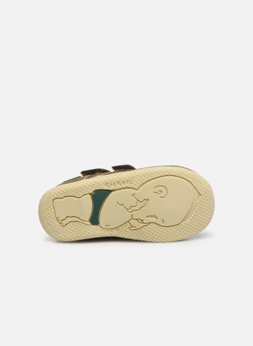 Boots en enkellaarsjes Kickers Bonkro Groen boven