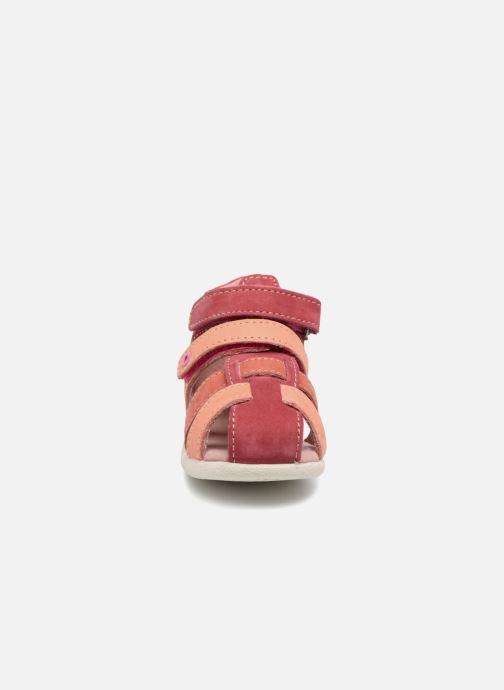 Sandali e scarpe aperte Kickers Babychan Rosa modello indossato