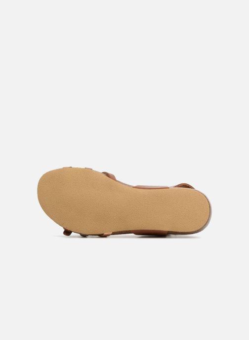 Sandales et nu-pieds Kickers Bonavista Marron vue haut