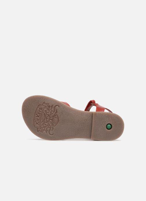 Sandales et nu-pieds Kickers Diese Rouge vue haut