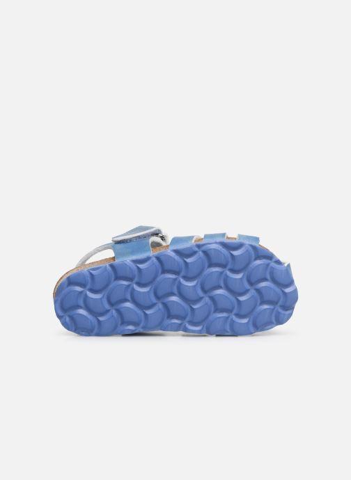 Sandalen Kickers Summertan blau ansicht von oben