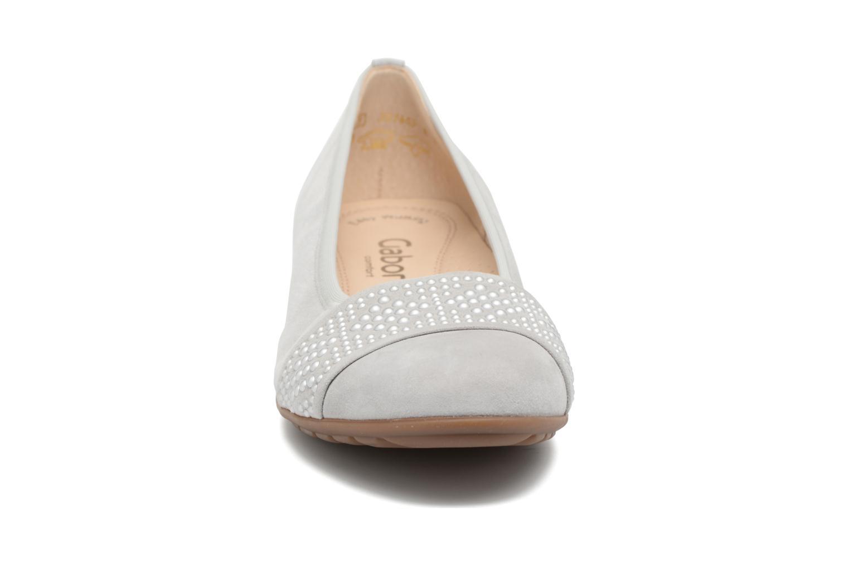 Ballet pumps Gabor Cesena Grey model view