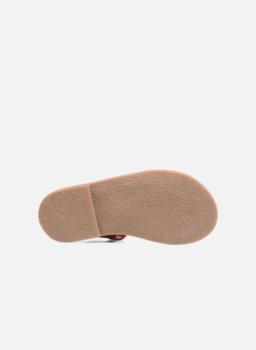 Sandales et nu-pieds Aster Corelle Rose vue haut