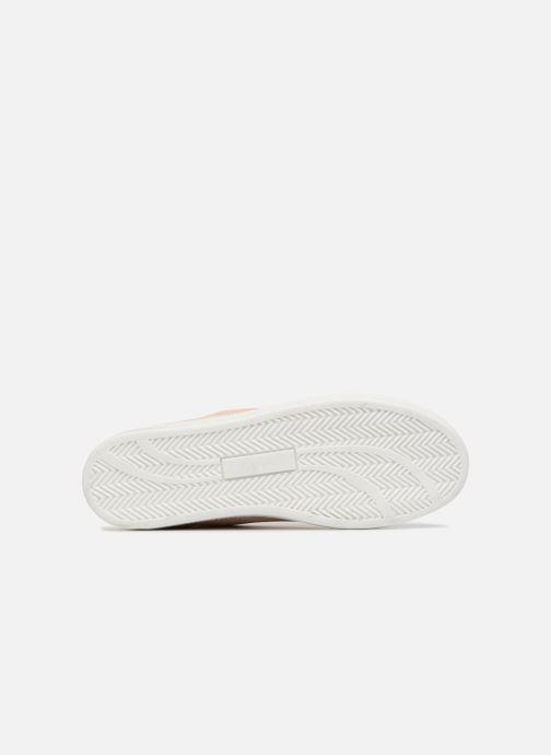 Sneakers Jonak APRIL Beige immagine dall'alto