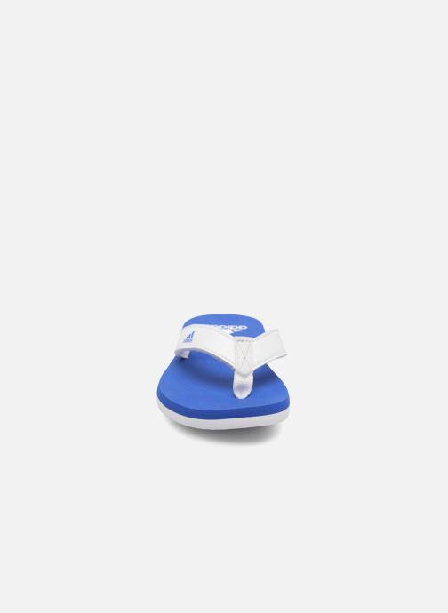 Zehensandalen adidas performance Beach Thong 2 K blau schuhe getragen