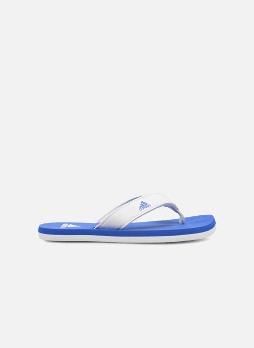 Chanclas adidas performance Beach Thong 2 K Azul vistra trasera