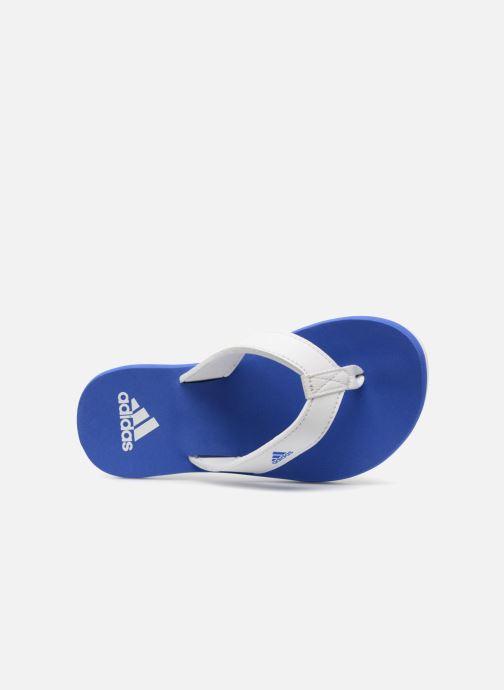Chanclas adidas performance Beach Thong 2 K Azul vista lateral izquierda