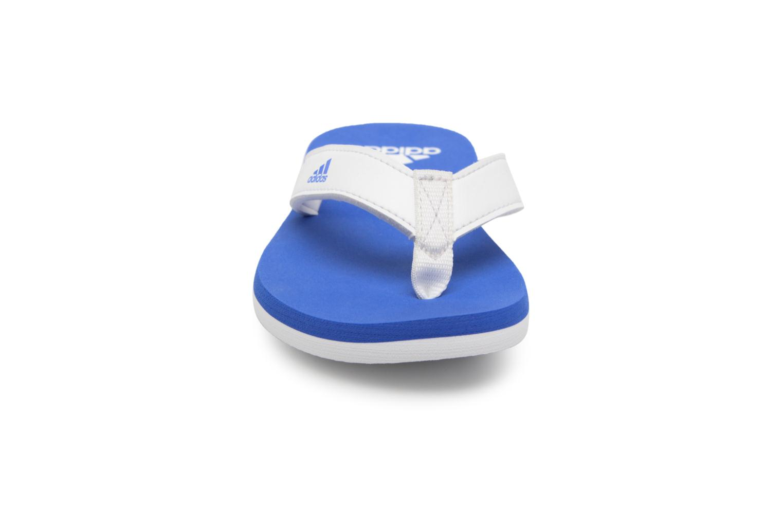 Tongs Adidas Performance Beach Thong 2 K Bleu vue portées chaussures