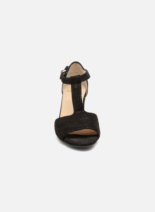 Sandales et nu-pieds Ara Massa 34677 Noir vue portées chaussures