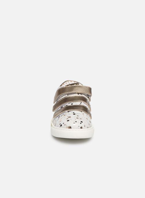 Sneaker Primigi Alda weiß schuhe getragen