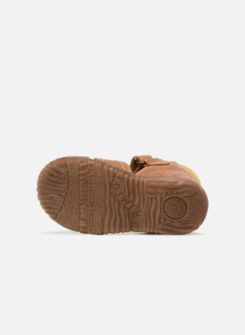 Sandales et nu-pieds Primigi Virgilio Marron vue haut