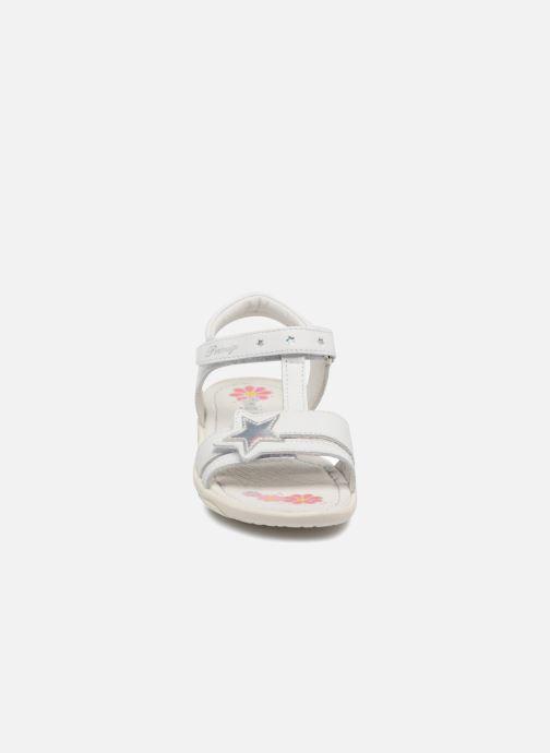 Sandales et nu-pieds Primigi Nuria Blanc vue portées chaussures