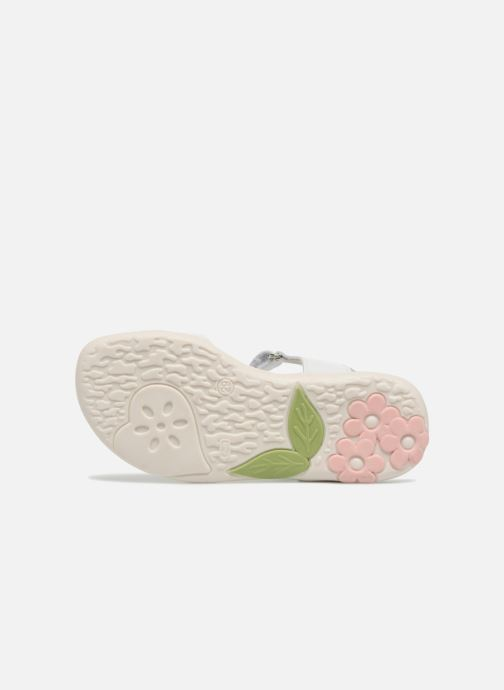 Sandales et nu-pieds Primigi Nuria Blanc vue haut