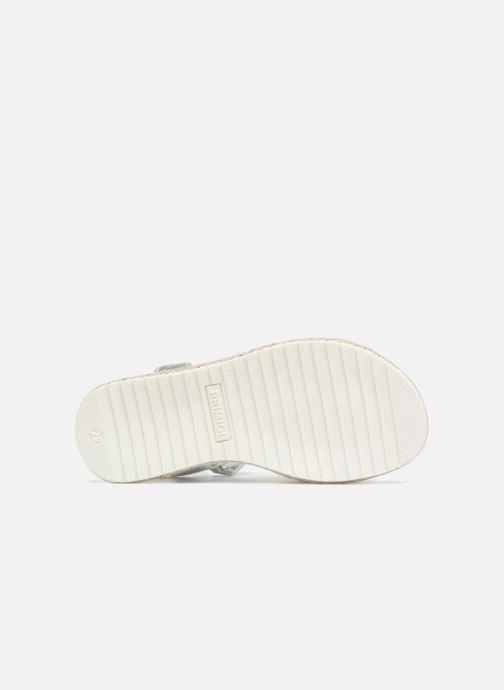 Sandales et nu-pieds Primigi Adetola Argent vue haut