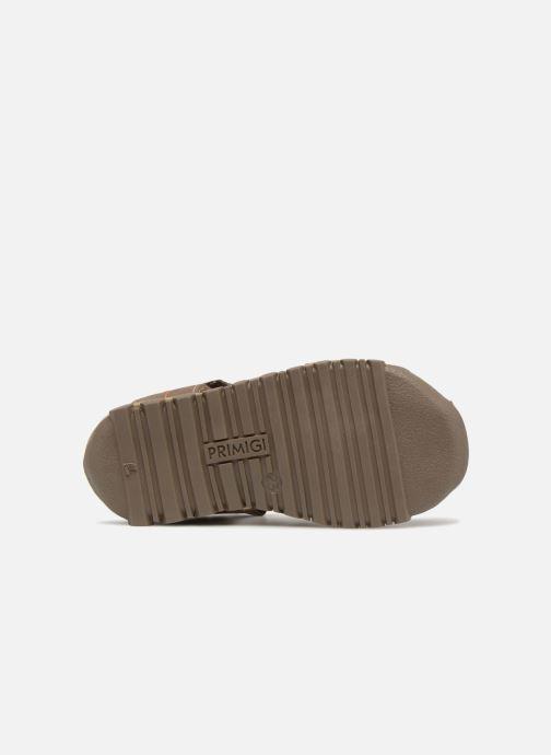 Sandales et nu-pieds Primigi Marlo Marron vue haut