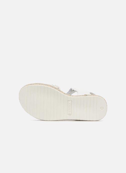 Sandales et nu-pieds Primigi Klara Blanc vue haut