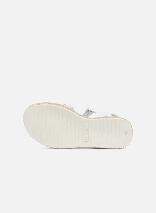Sandali e scarpe aperte Primigi Klara Bianco immagine dall'alto
