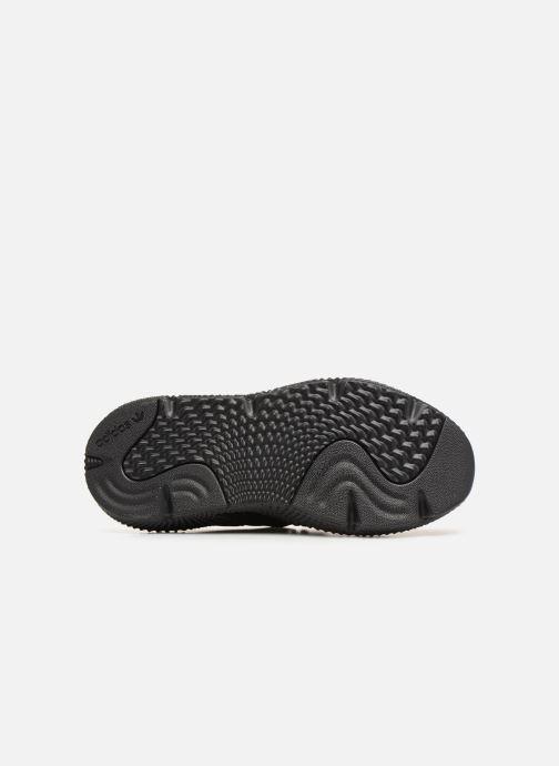 Sneakers adidas originals Prophere Svart bild från ovan