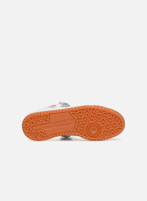 Sneakers adidas originals Forum Lo Bianco immagine dall'alto
