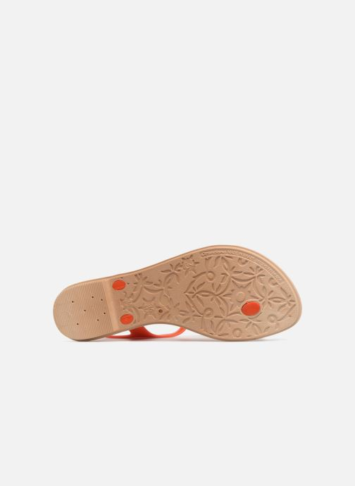 Sandales et nu-pieds Grendha Romantic II Sandal Orange vue haut