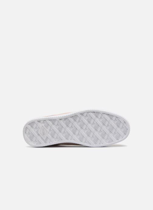 Sneakers P-L-D-M By Palladium Kalexia Sud Roze boven