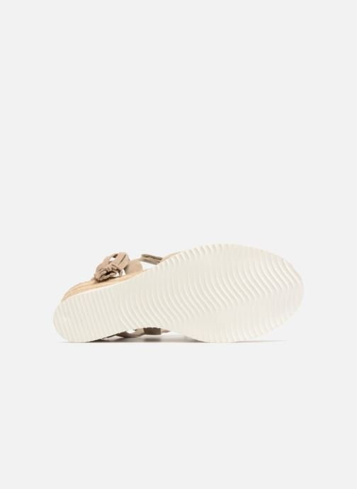Espadrilles P-L-D-M By Palladium Plumea Sud Beige view from above
