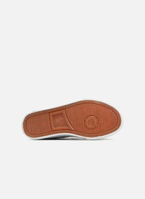 Sneaker Polo Ralph Lauren Easten EZ blau ansicht von oben