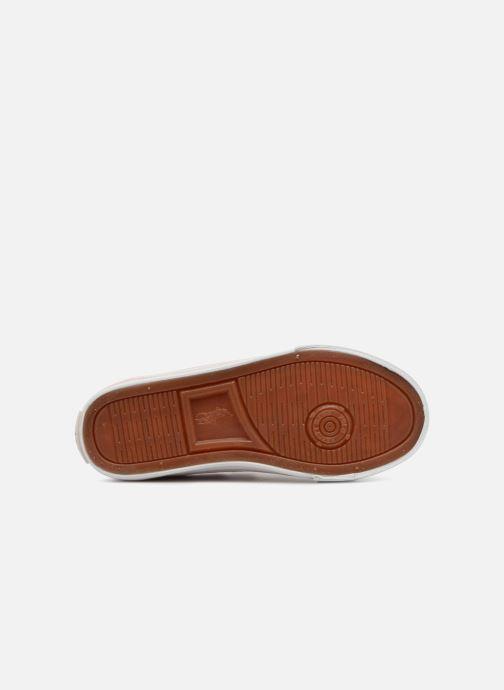 Sneakers Polo Ralph Lauren Easten EZ Roze boven