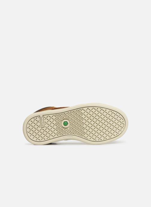 Chaussures à lacets Timberland Groveton Leather Chukka Kids Marron vue haut