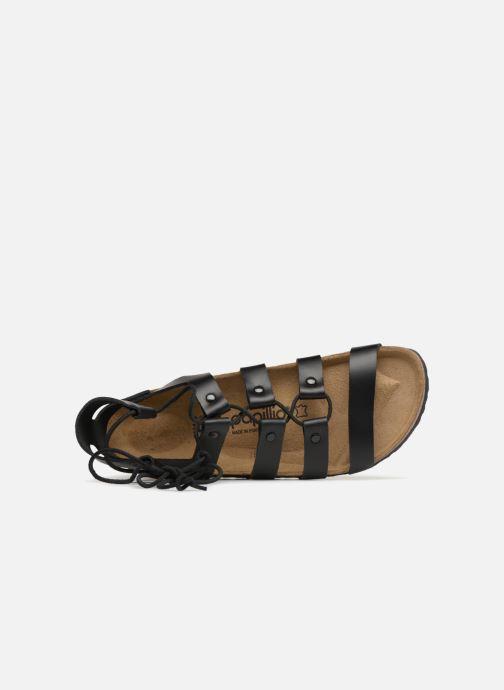 Sandales et nu-pieds Papillio Cleo Noir vue gauche