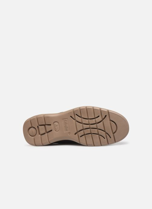 Chaussures à lacets Callaghan Parkline Bleu vue haut