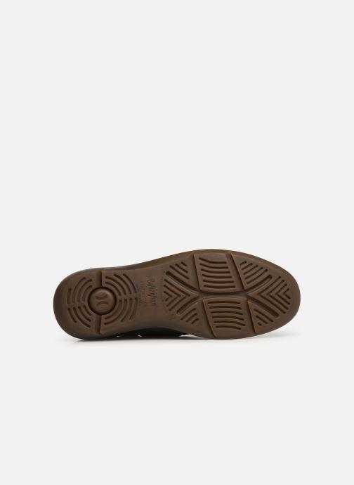 Zapatos con cordones Callaghan WAVELINE Marrón vista de arriba