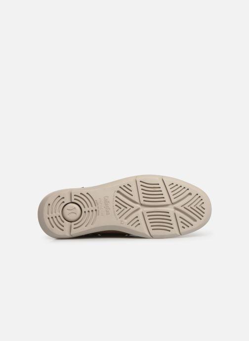 Chaussures à lacets Callaghan WAVELINE Beige vue haut
