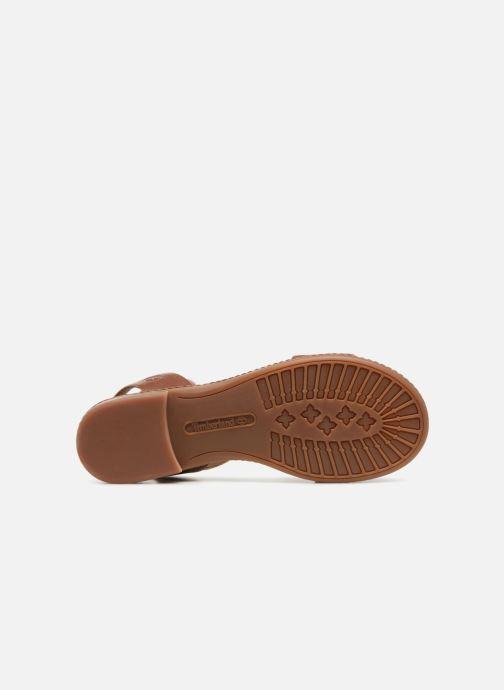 Sandales et nu-pieds Timberland Cherrybrook Sandal Marron vue haut