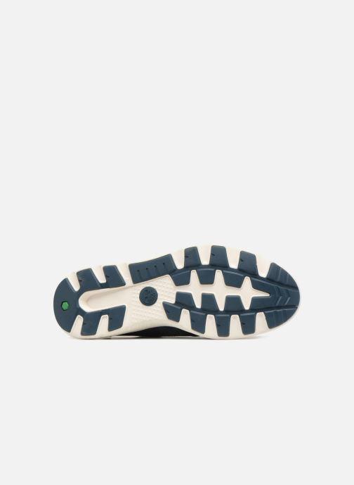 Sneakers Timberland FlyRoam Leather Oxford Azzurro immagine dall'alto