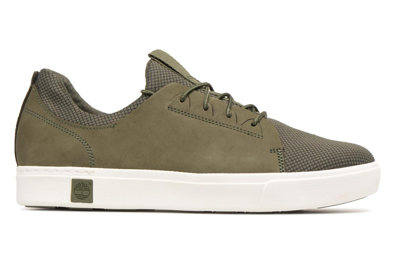 Baskets Timberland Amherst Lthr LTT Sneaker Vert vue derrière