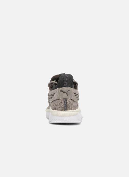 Sneaker Puma TSUGI NETFIT v2 evoKNIT grau ansicht von rechts
